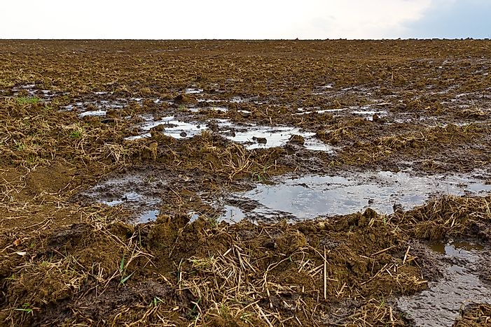 What Is Agricultural Pollution?