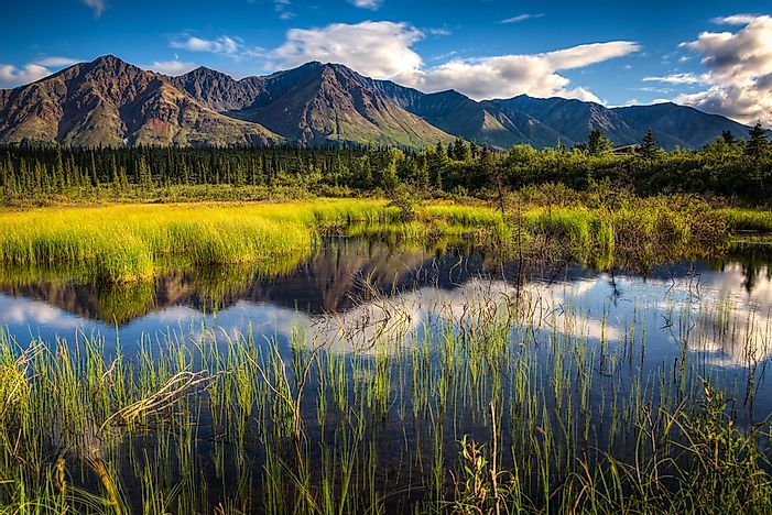 National Park Spotlight: Denali National Park and Preserve