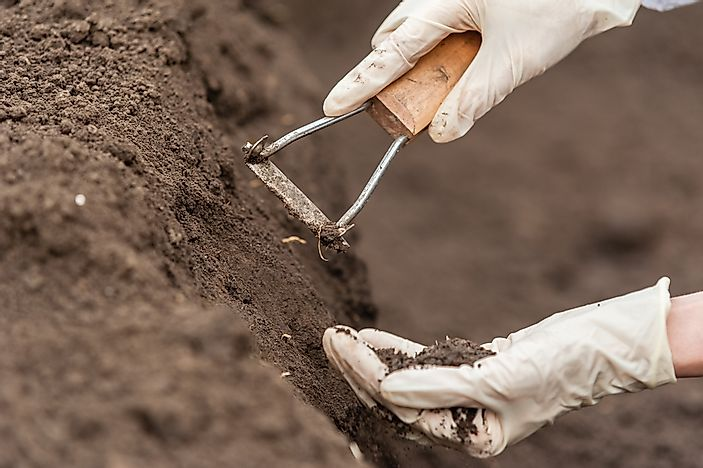 What is Soil Science?