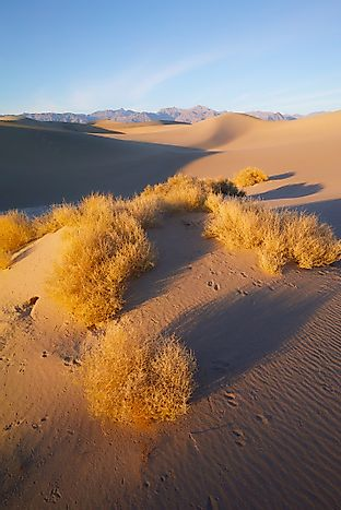 Where Does The Great Basin Desert Lie?