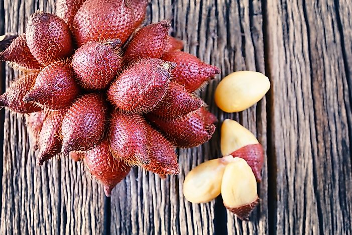 What Is Salak (Snake Fruit)?