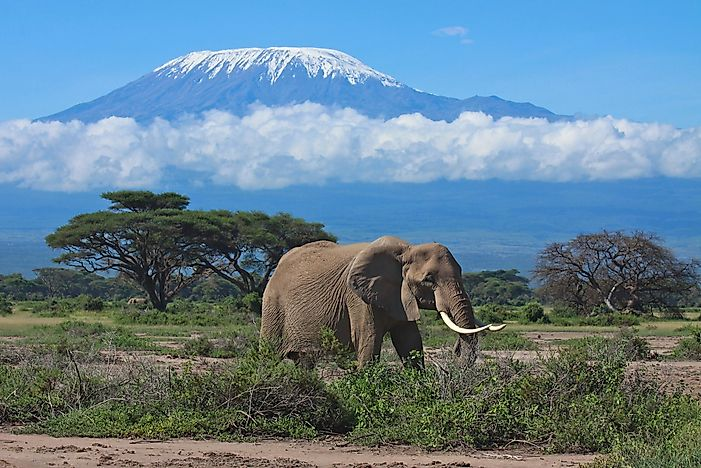 #2 Mount Kilimanjaro