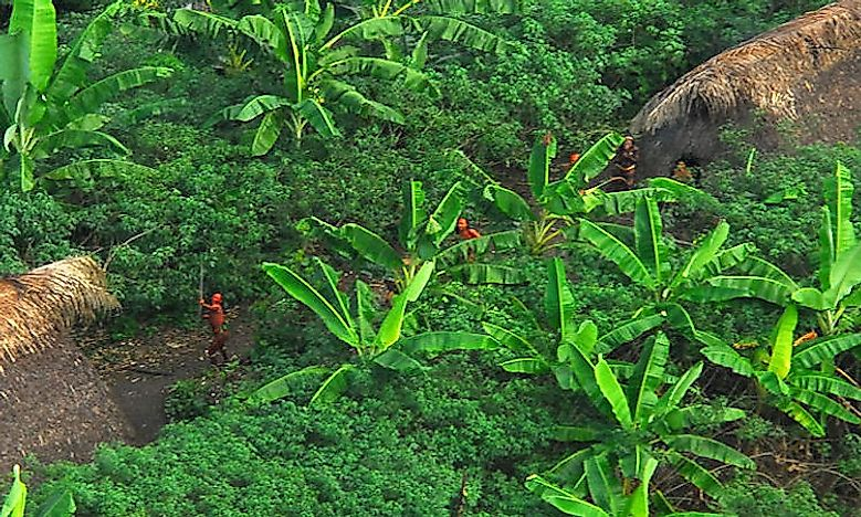 The Uncontacted Peoples Of The World: Mystery And History Surrounding Them