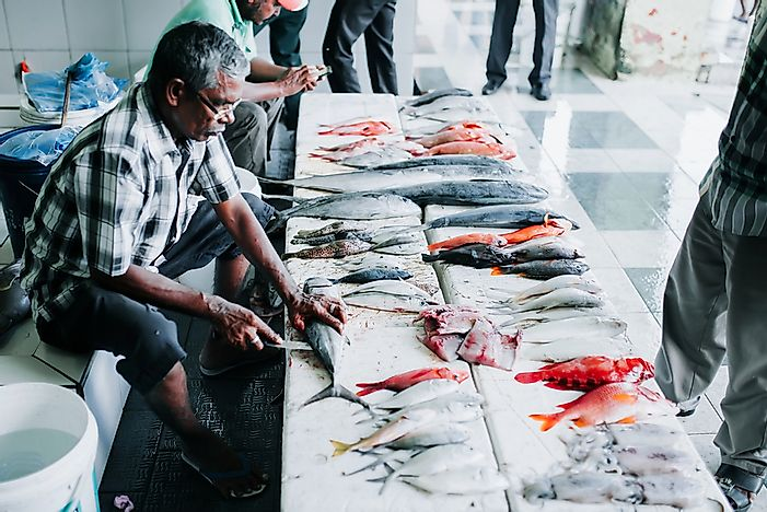 Fish for sale at the Fish Market - Editorial credit: Ivan Kurmyshov / Shutterstock.com