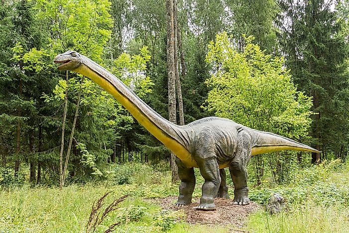 Diplodocus Facts: Extinct Animals of the World