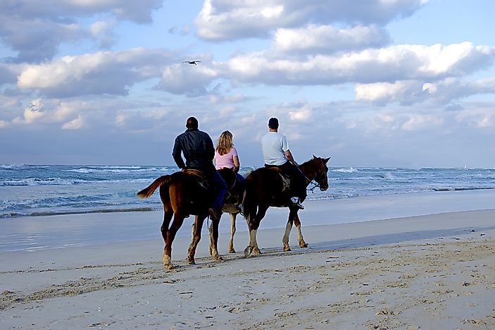 Horsesback riding on the beach in Hawaii.