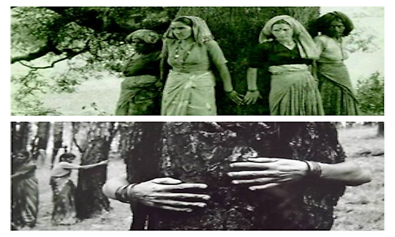 Risking Life To Save Trees: The Chipko Movement Of India, An Inspiration To The World