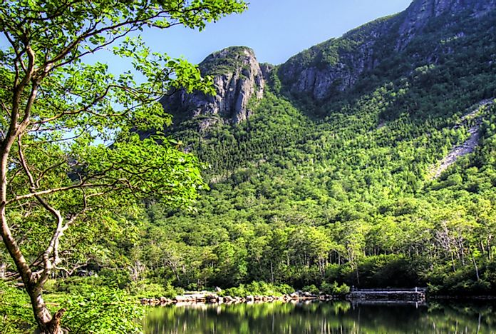 Eagle Cliff in Franconia State Park, New Hampshire.