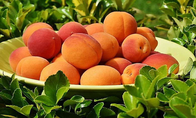 World's Top Peach Producing Countries