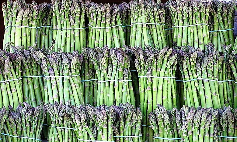 Top Asparagus Producing Countries In The World