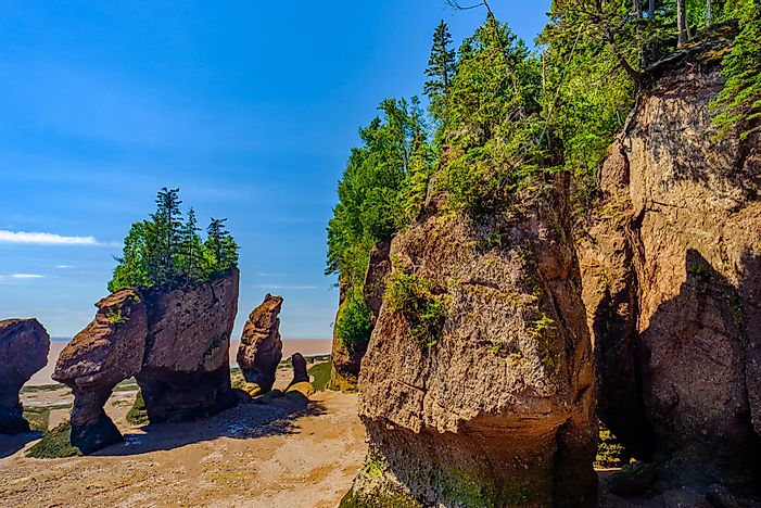 What Is Unique About The Bay of Fundy?