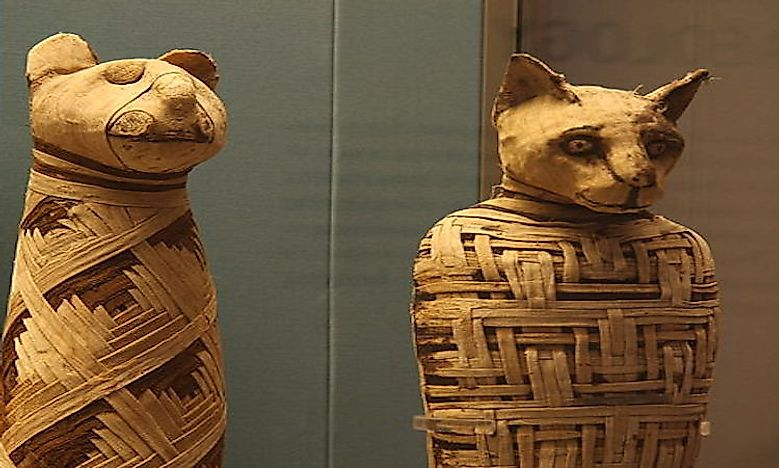 Animals In Ancient Egyptian Society