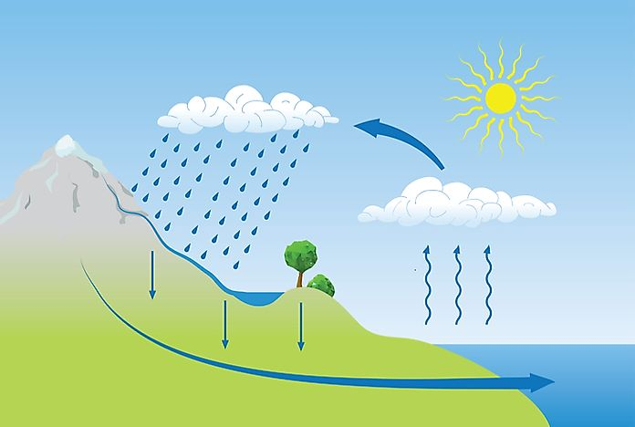 Water Cycle: The Water Cycle