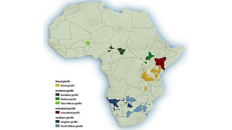 World Map  World Atlas  Atlas of the World Including