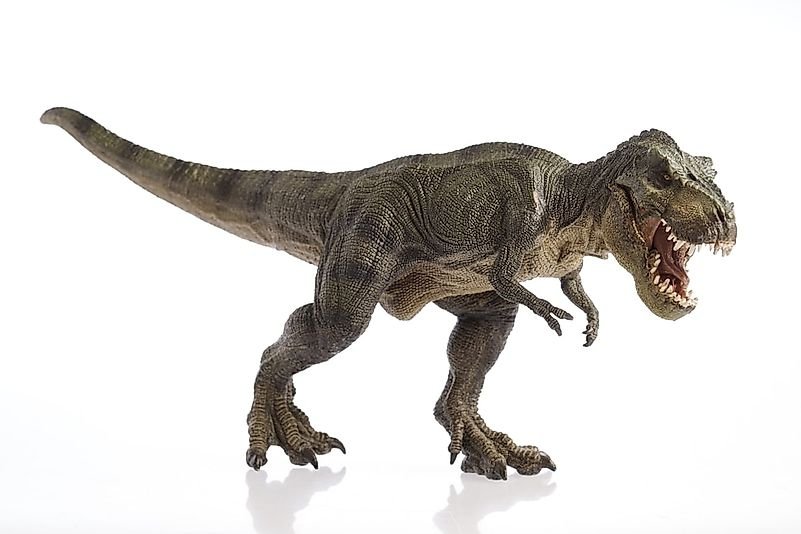 A 3D rendering of a tyrannosaurus.