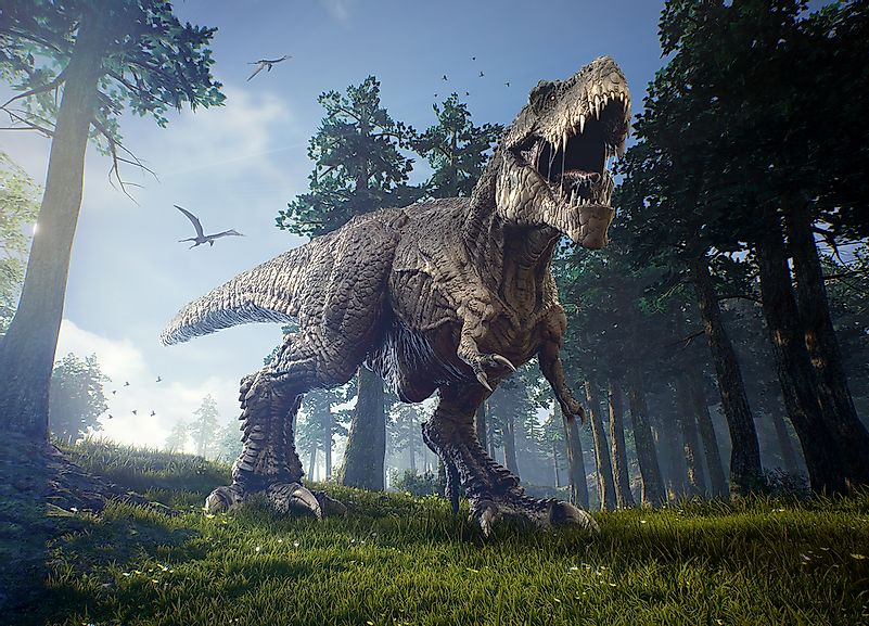 Although large in size, Tyrannosaurus rex is now thought to have been a scavenger, not a hunter.
