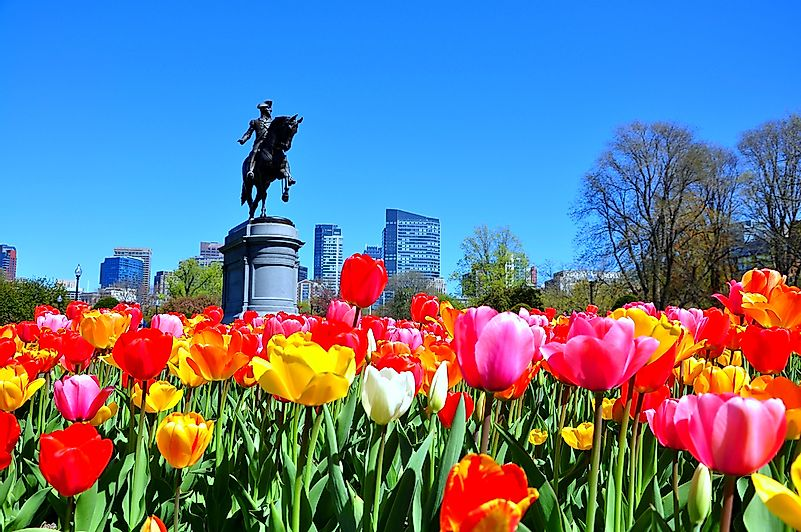 A view of the Public Gardens in Boston.