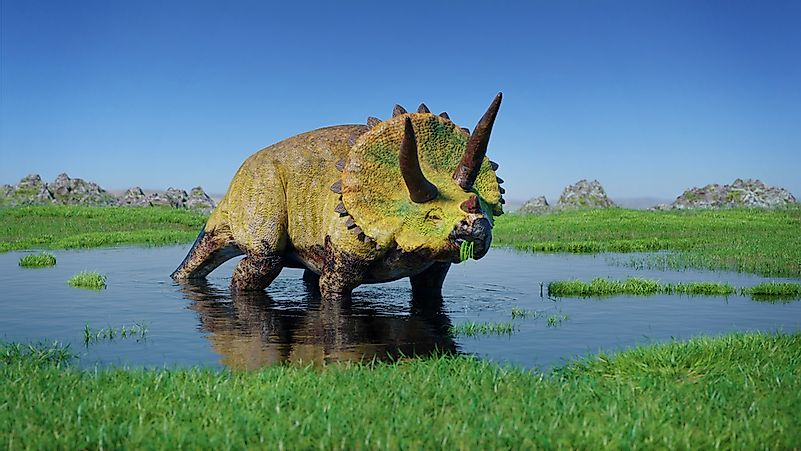 The triceratops is one of the most well-known dinosaurs.