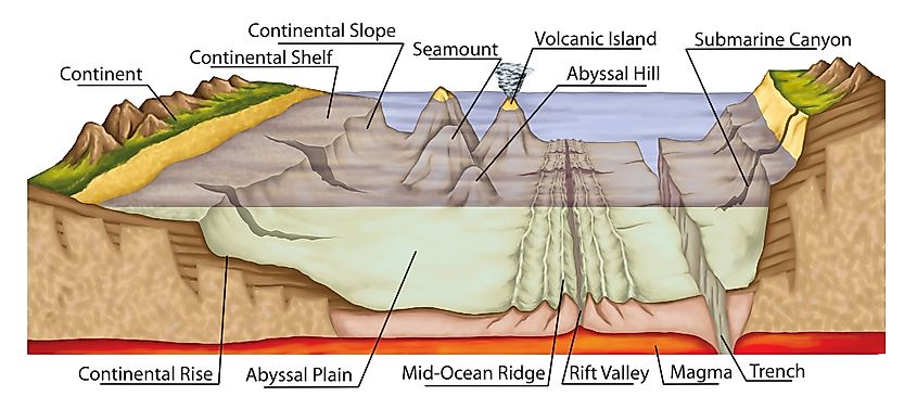 What Is An Abyssal Plain?