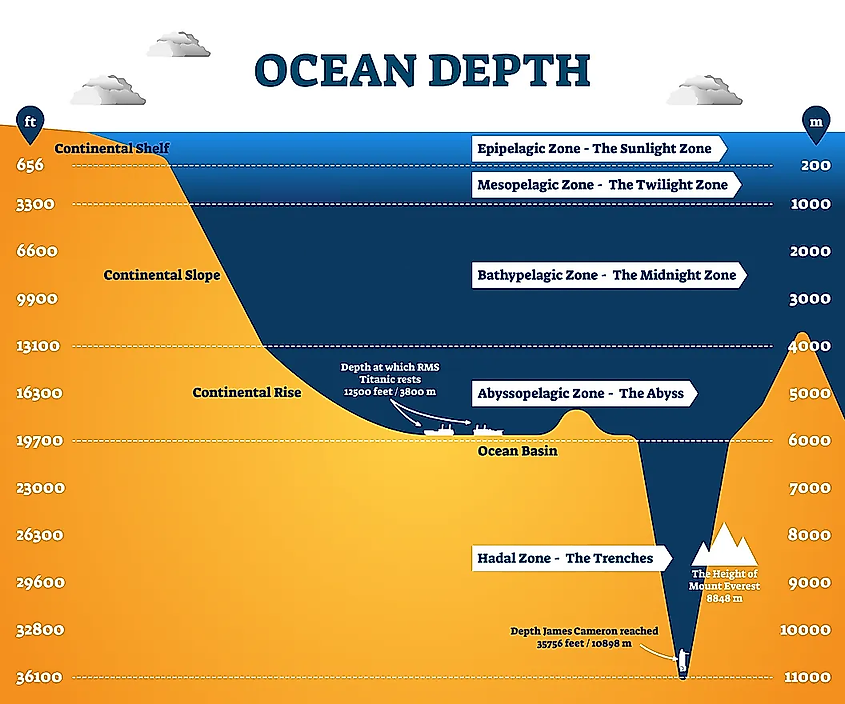 The Mariana Trench Is 7 Miles Deep: What's Down There?