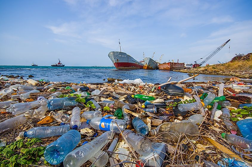Plastics strewn along the coast in the Panama Canal region. Image credit: Fotos593/Shutterstock.com