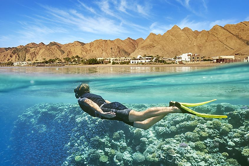 Red Sea swimming