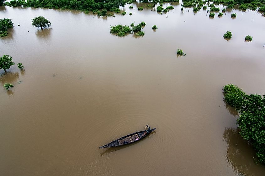 Bangladesh is home to a number of forests that are partially submerged in water.