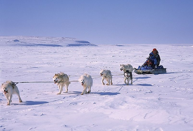 Dog sledding in Cambridge Bay, Nunavut, Canada.