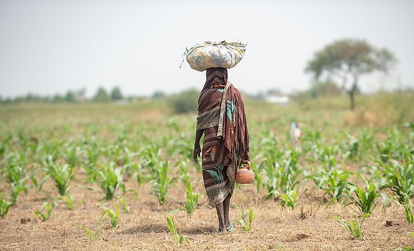 Farmer African girl walking in farm field in Chad N'Djamena travel, located in Sahel desert and Sahara.