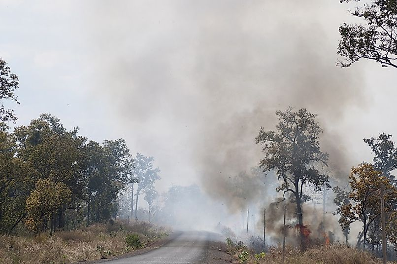 Forests being cleared for farming using the slash-and-burn method in Cambodia.