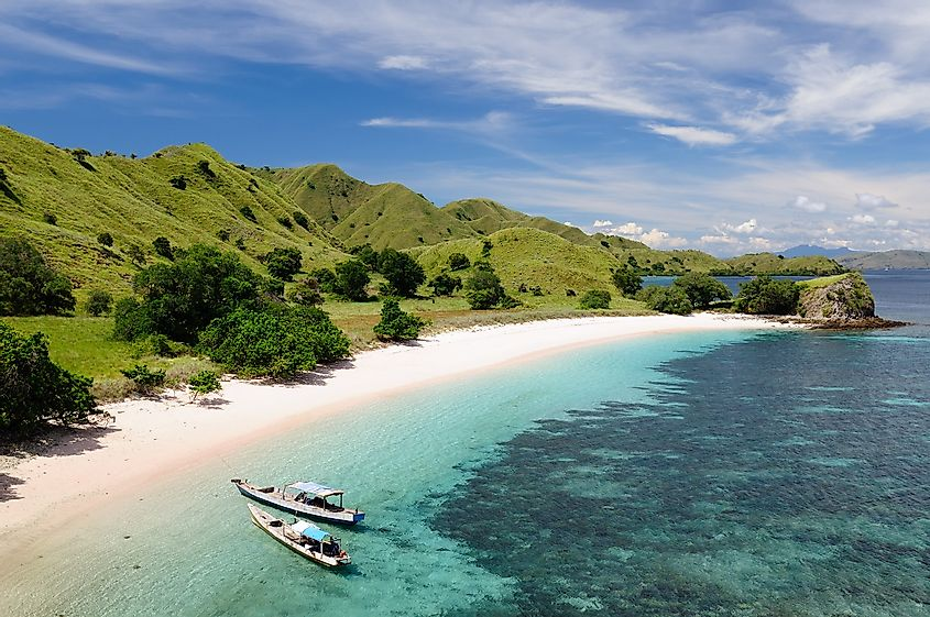 Beach in the Komodo national park in Indonesia. Image credit: Rafal Cichawa/Shutterstock.com