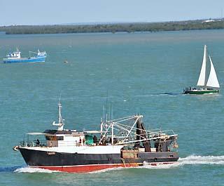 harbor boats