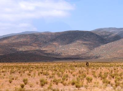 chile, coquimbo, desert scenery