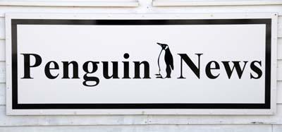 falkland islands, penguin news