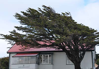 falkland islands, stanley weather conditions