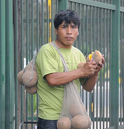peru, lima, street fruit vendor