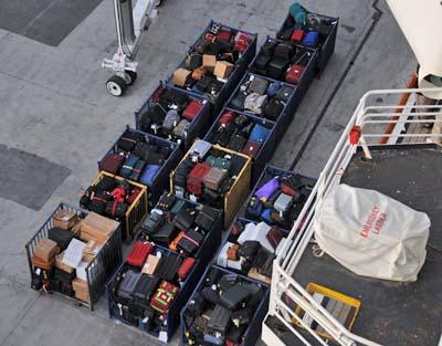 trip luggage