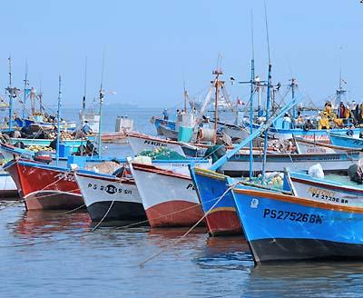 peru, paracas, fishing boats