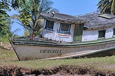 costa rica, puerto limon, river boat