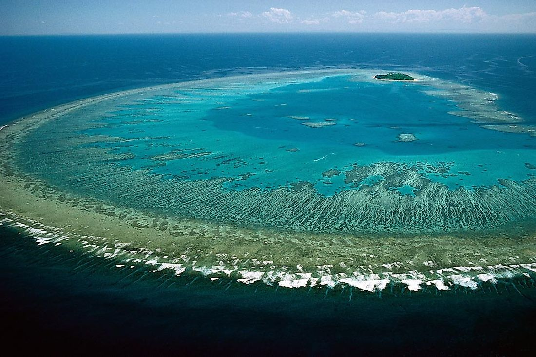 The Great Barrier Reef of Australia Is Currently Facing Immense Threat From Global Warming And Pollution.