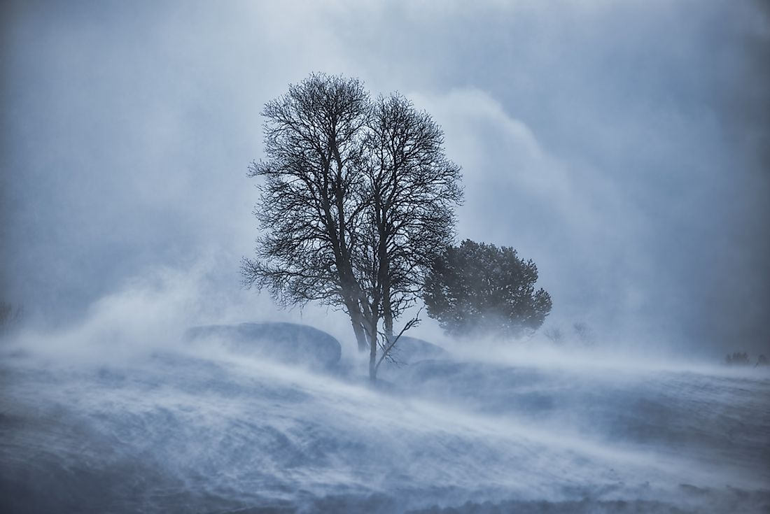 During a ground blizzard, white-out conditions are created by snow and ice lifted up from the ground.