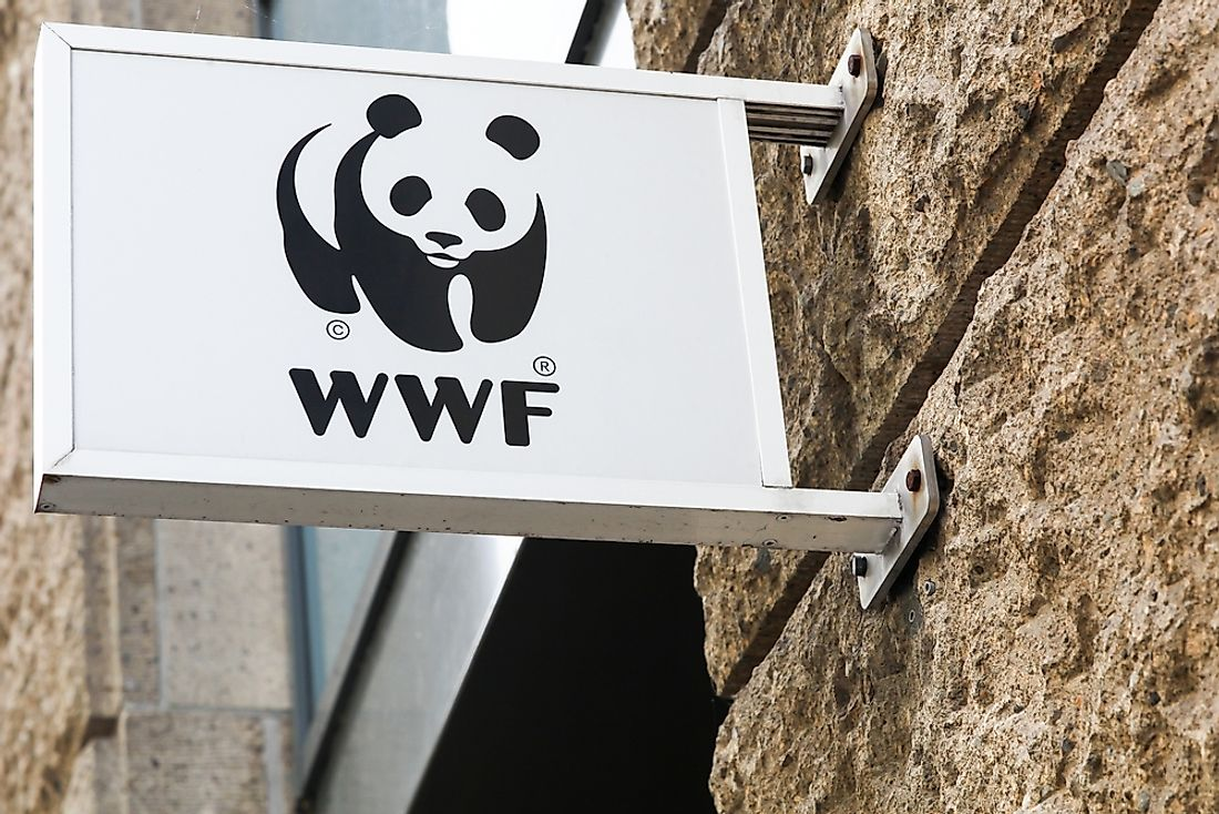 WWF regional office in Hamburg, Germany. Editorial credit: ricochet64 / Shutterstock.com