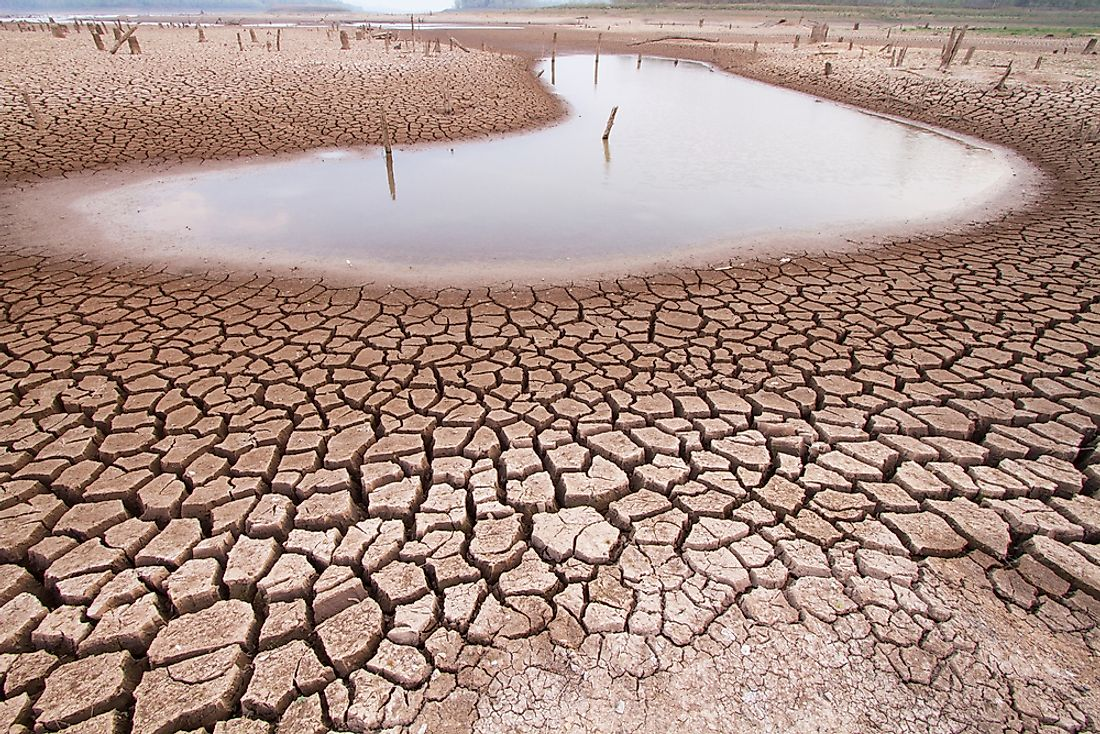 Dry land affected by drought.