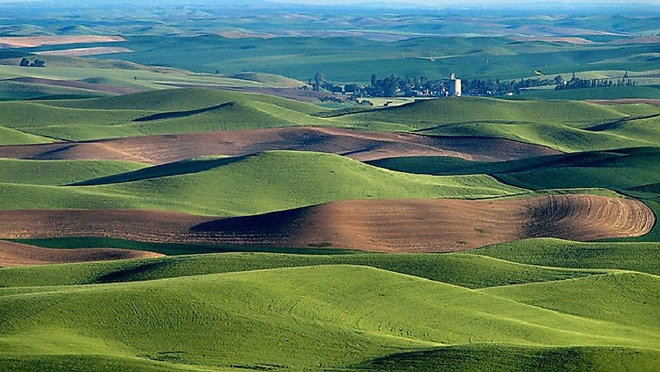 The presence of large amounts of loess, such as here in the Palouse Region of the U.S. state of Washington, allows for high levels of agricultural output.