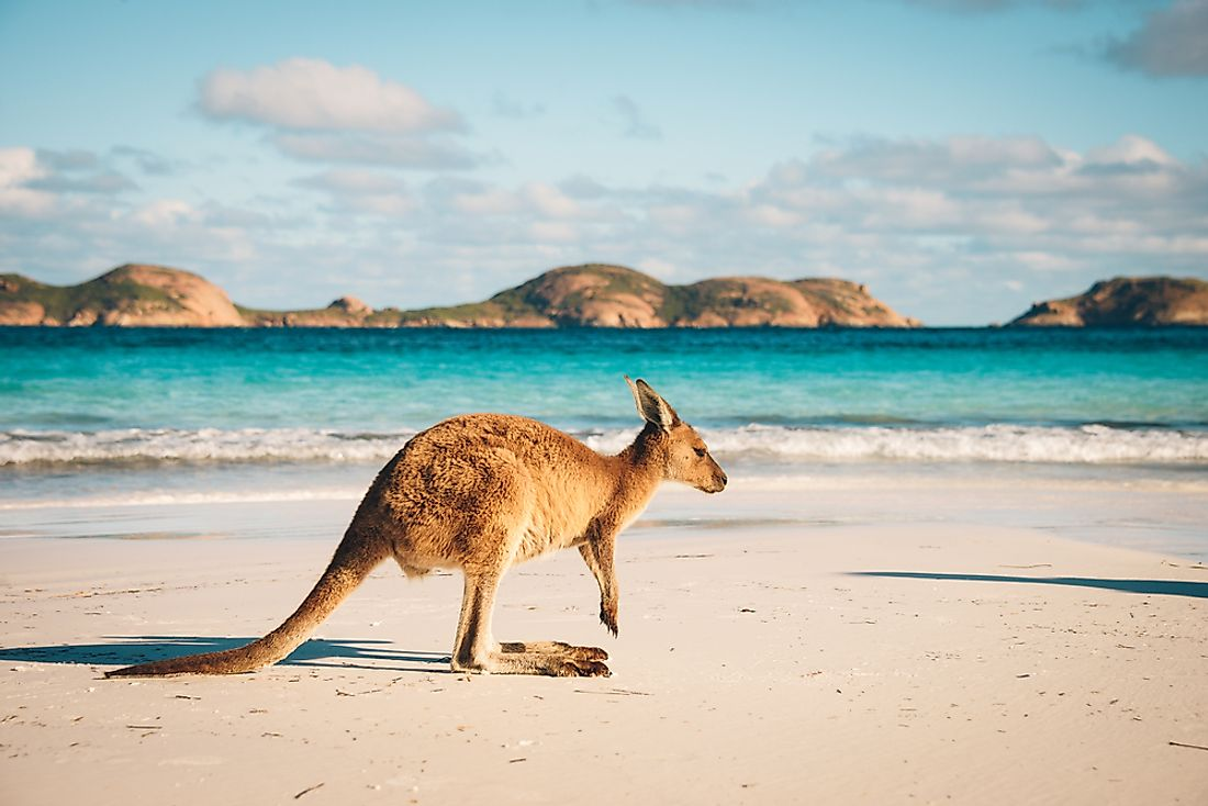 "Due to its isolation and southernly location, Australia is often known as ""down under""."