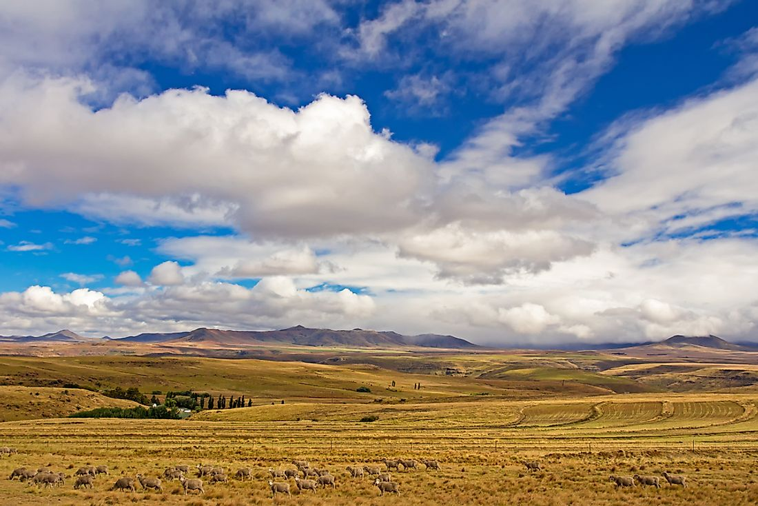 The Eastern Cape, where the Xhosa Wars took place.
