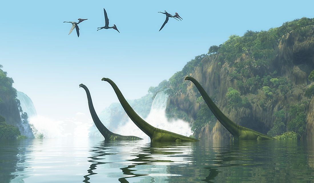 Dinosaurs are classified as avian and non-avian.