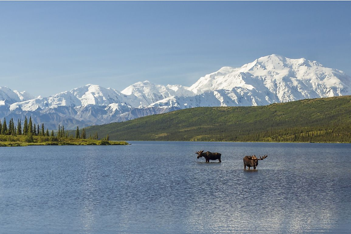View of part of the Alaska Range in Denali National Park, Alaska.