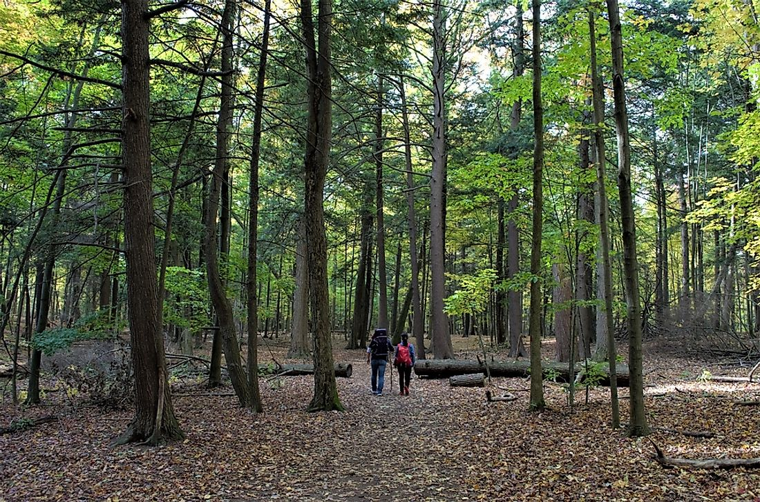 Rouge Urban National Park, in the Greater Toronto Area, is the second largest park in Canada.
