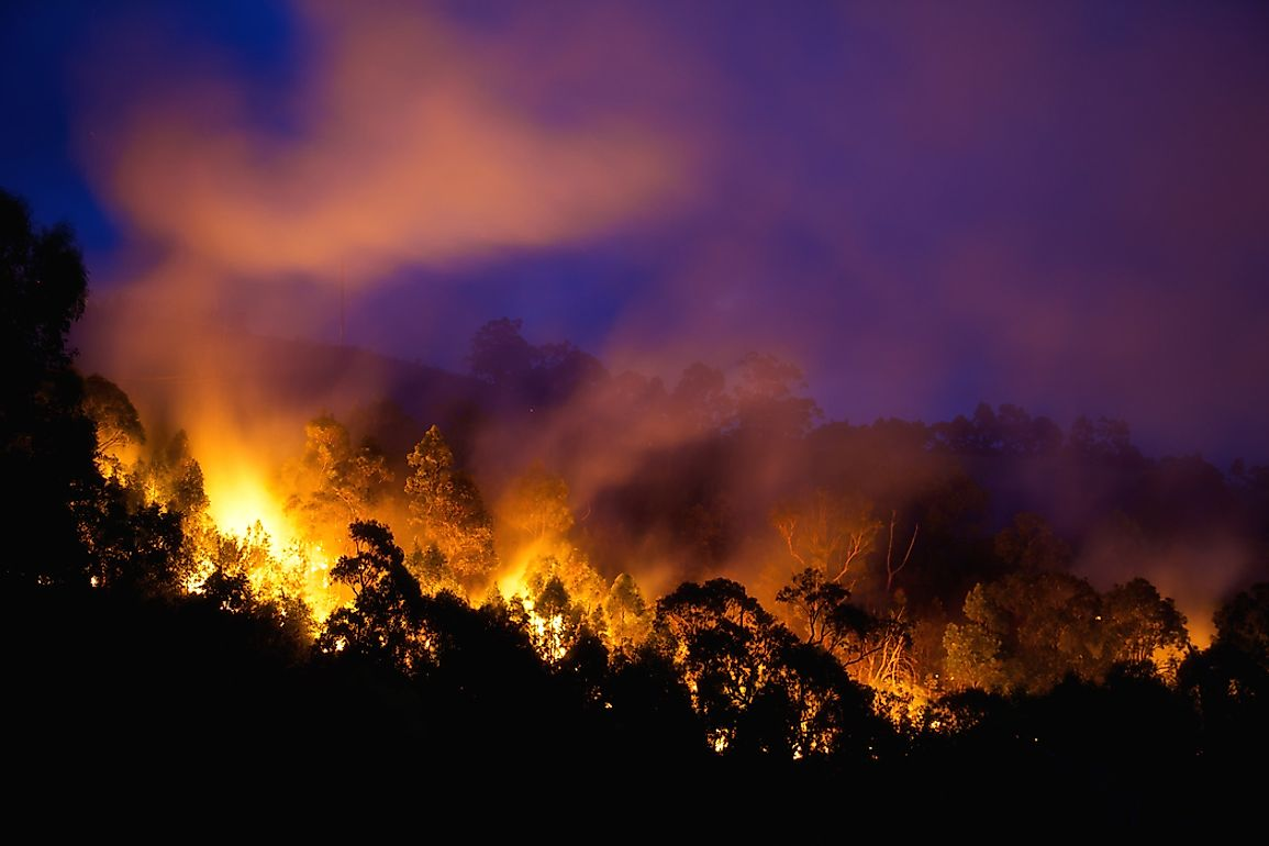 Australia's bush climate is particularly susceptible to wildfires, the worst of which have cumulatively killed no fewer than 326 people.